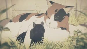 kissat kissailee